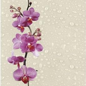Панели ПВХ Decostar Фьюжн Дикая орхидея, 2.5 м.