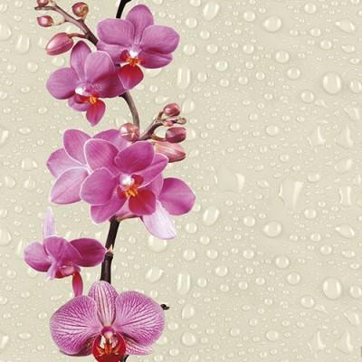 Панели ПВХ Европрофиль Орхидея, 2.5 м